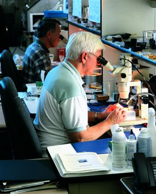 Bill Wireman and Bill Lakatosh, 2011